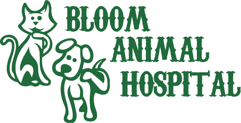 Bloom Animal Hospital